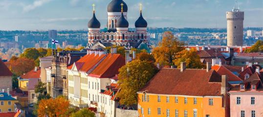 Learn Estonian Online - (Business)